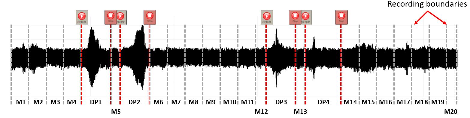 APEX DS Data Acquisition Software-Unique Recording